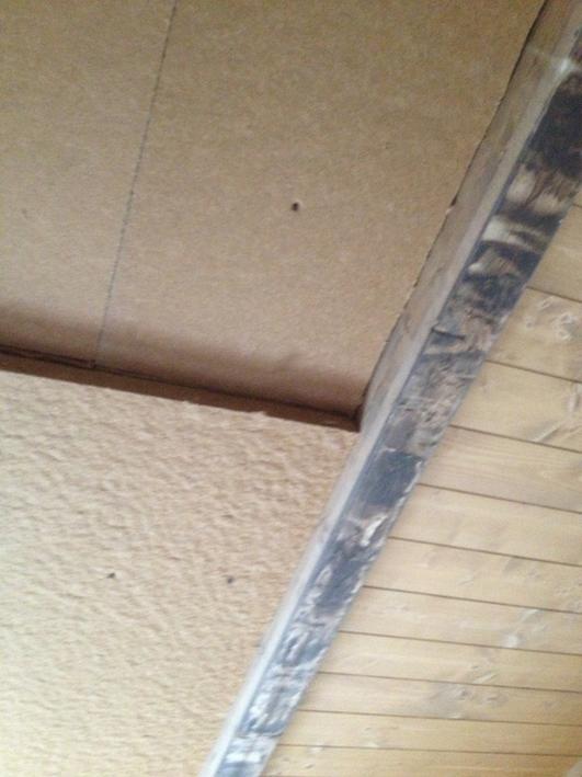 Isolamento interno in fibra di legno naturale a soffitto, realizzato in un agriturismo